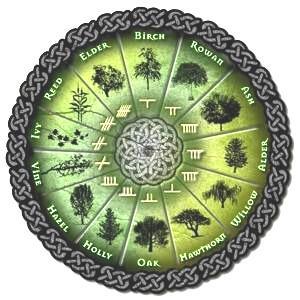 Horóscopo Celta Animal – Signos e Características